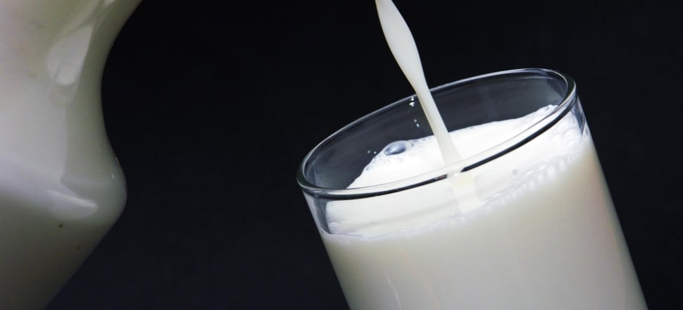 Dairy product prices rose at the Global Dairy Trade auction. Photo: Getty Images