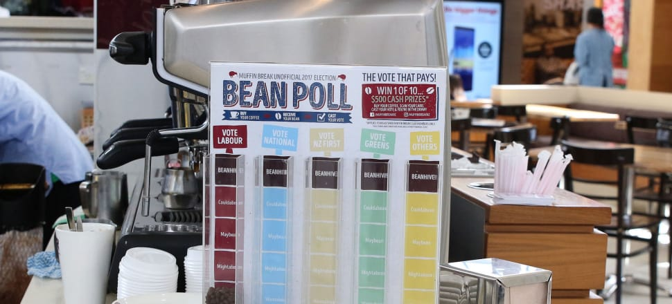 "The ""bean poll"" at Manukau Westfield during the last election: instead of fostering new political parties, it seems that MMP is actually leading to fewer parties, says Bryce Edwards. Photo: Lynn Grieveson"