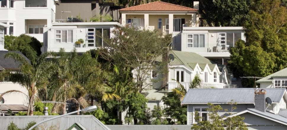 Auckland's inner city suburbs have lost 17 percent of their tree canopy in the last decade. Photo: Auckland Council