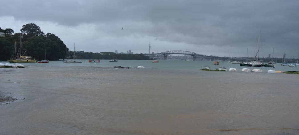 More frequent floods from the harbour are turning parts of Little Shoal Bay into a salty estuary. Photo: Supplied