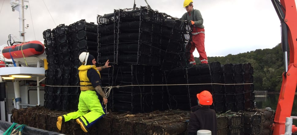 Oyster farm baskets are removed from Stewart Island's Big Glory Bay last year. Photo: Supplied