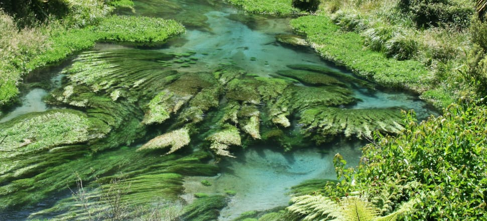 Water quality and the shift to a low carbon economy are key issues for any new Government. Rod Oram details the challenges and how the parties are responding.  Photo of the river below the Blue Spring in Putaruru by Lynn Grieveson