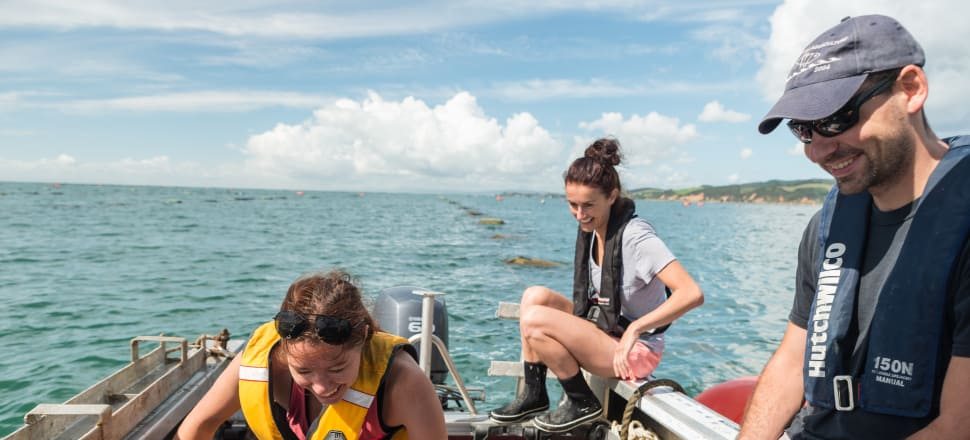 Maintaining sensors that monitor seawater quality and pH change in the Firth of Thames are (L-R) marine biology researcher and doctoral candidate Emily Joy Frost, and university Marine Technicians  Esther Stuck and Dr Peter Schlegel. Photo by Craig Norrie
