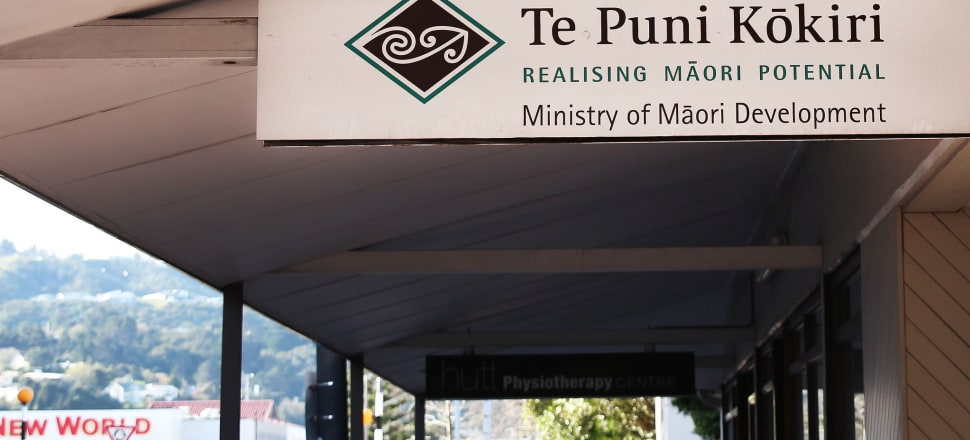 """""""We get told all the time about how Māori are doing and Māori statistics and I don't know who those people are."""" Photo: Lynn Grieveson"""