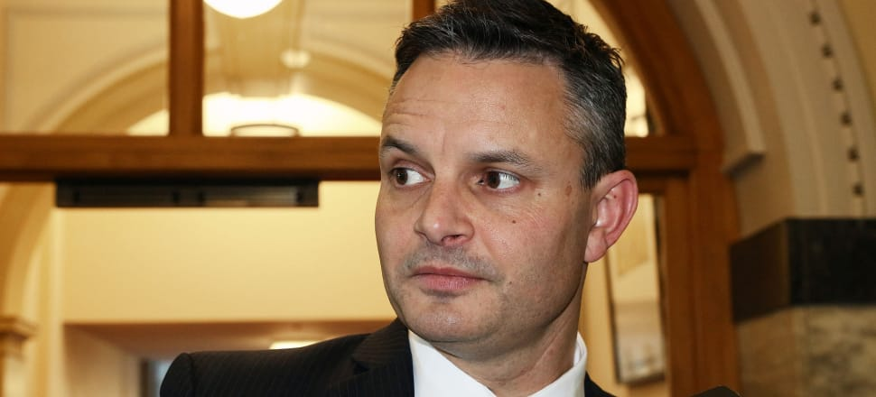 James Shaw bravely stood as man alone at the helm of the good ship Green Party, writes Chris Ford. Photo: Lynn Grieveson
