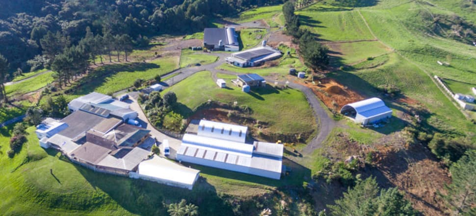 The Steel Rd, Ararimu farm, which has been in the Fletcher family for 30 years. Photo: Open2view.com
