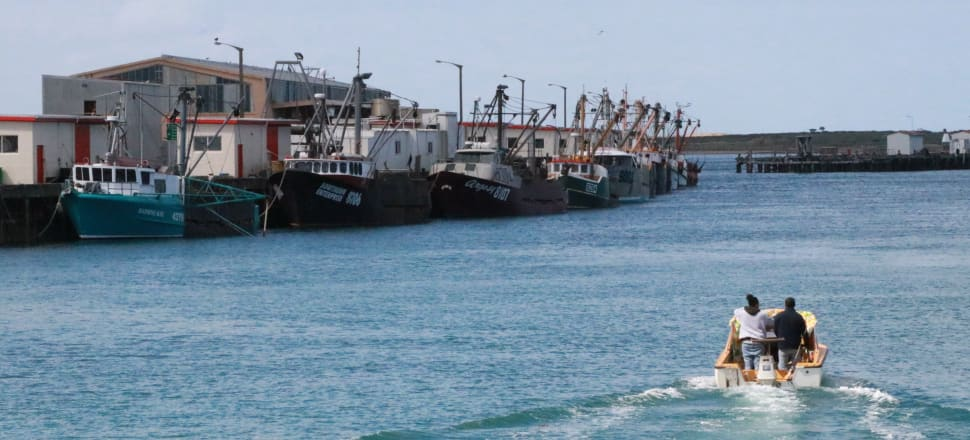 Oyster boats at Bluff's South Port. Photo: David Williams