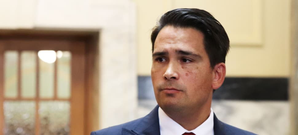 """Simon Bridges is conservative """"but not stupidly so"""", with a balance of youth and ministerial experience, Liam Hehir writes."""