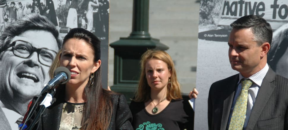 Jacinda Ardern and Climate Change Minister James Shaw. Photo: Lynn Grieveson