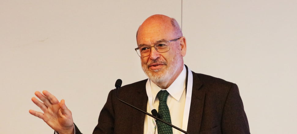 Sir Peter Gluckman wrote in his final report to the PM that cutting methane is crucial to NZ's efforts to slow climate change. Photo: Lynn Grieveson