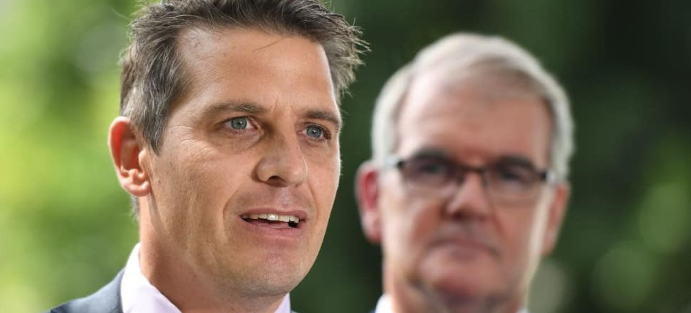 NSW Labor names leader for lower house