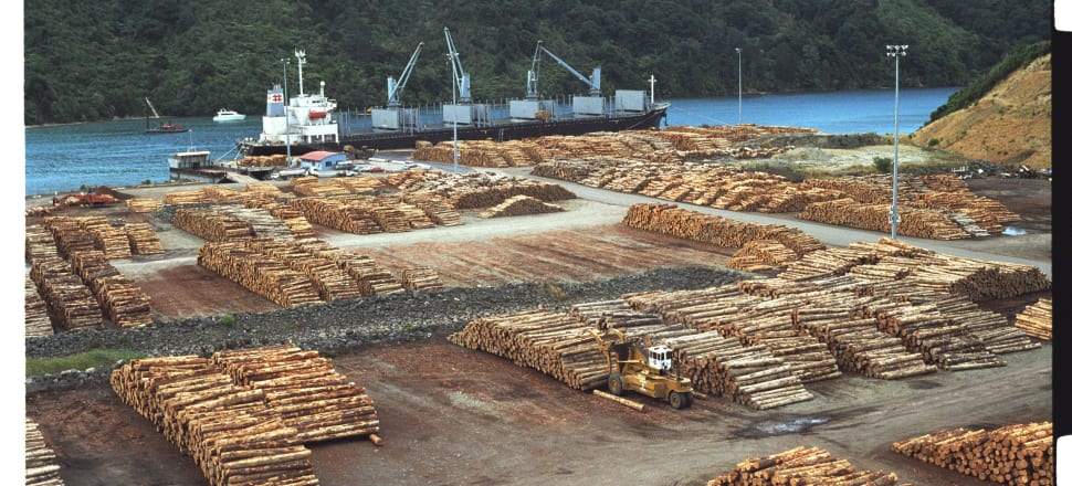 Forestry and expanding housing are two of the risks to the nation's soil and food growing. Photo: Getty Images
