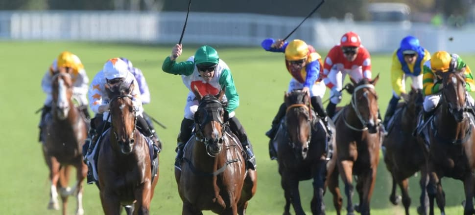 Guineas races attract strong entries