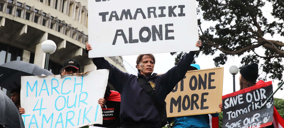"Protesters have been calling for an end to the state's ""theft"" of Māori children - will new changes to Oranga Tamariki succeed where older legislation didn't? Photo: Lynn Grieveson."