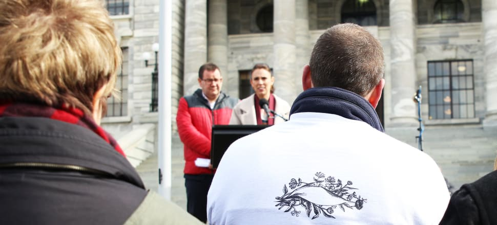 The number of suicide deaths is at an all-time high as the Government gears up to unveil long-awaited prevention plan. Photo: Lynn Grieveson