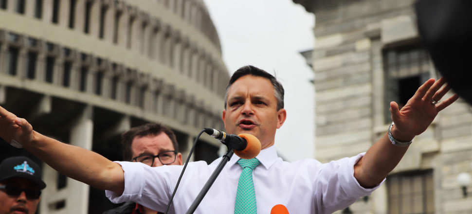 """This could have quite a significant effect on helping to get all of Government aligned around the goals of the targets outlined in the Zero Carbon Act and in the Paris Agreement,"" James Shaw said. Photo: Lynn Grieveson"