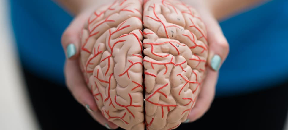 From a young age we need to take special care of our brains. Photo: Getty Images