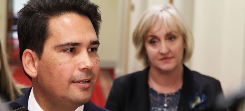 National leader Simon Bridges has been a fierce critic of a possible CGT, as is Amy Adams. Photo: Lynn Grieveson