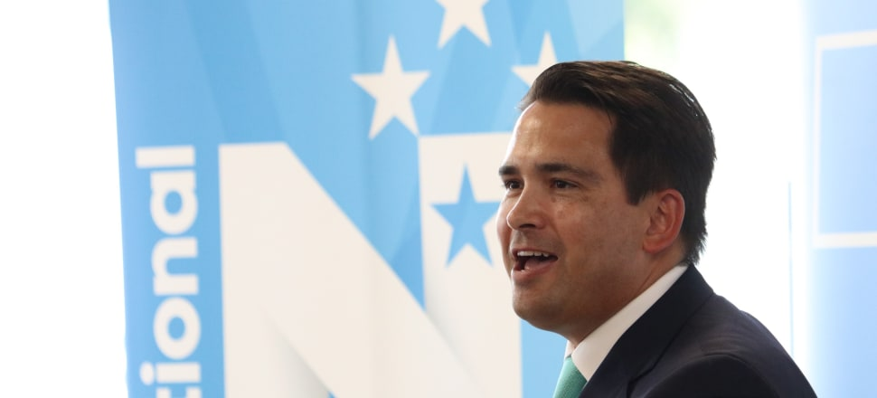 Kiwis' incomes are struggling to keep up with the rising cost of living, National leader Simon Bridges says. Photo: David Williams.