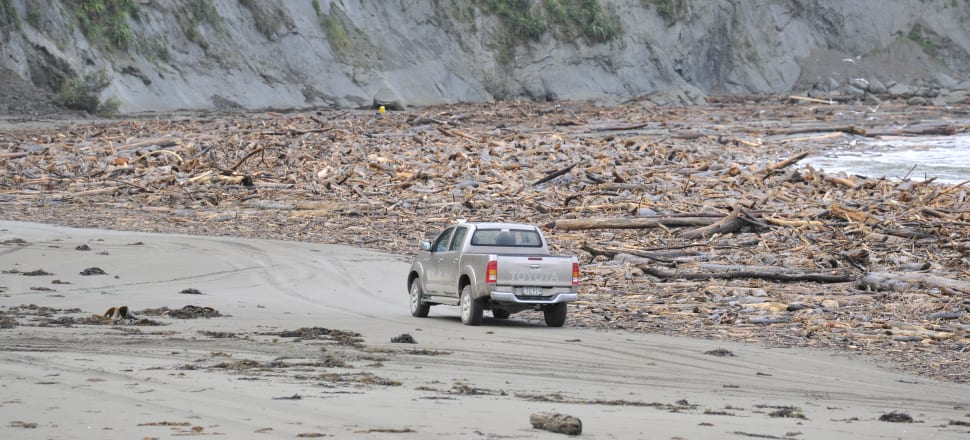 The inundation of parts of Tolaga Bay on the East Coast last year is just one of the mounting risks of mass plantation forestry. Photo: The Gisborne Herald.