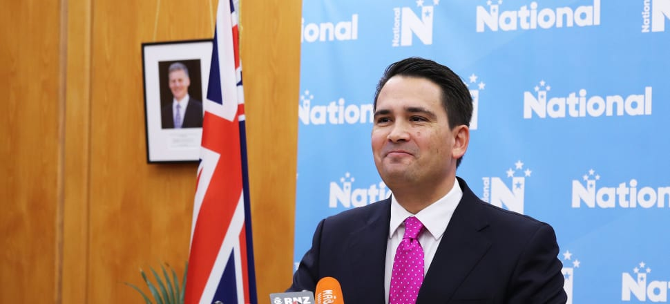 Simon Bridges was thrilled he scored a 'hit' on the Government over the Budget, and these small political eruptions should always be covered, says Liam Hehir. Photo: Lynn Grieveson