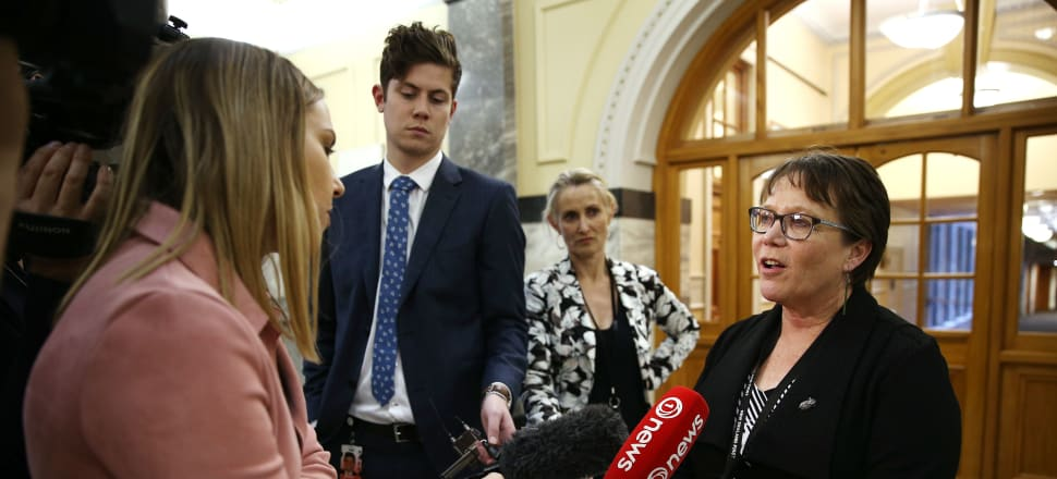 Children's minister Tracey Martin has reached for the inquiry playbook.  Photo: Getty Images