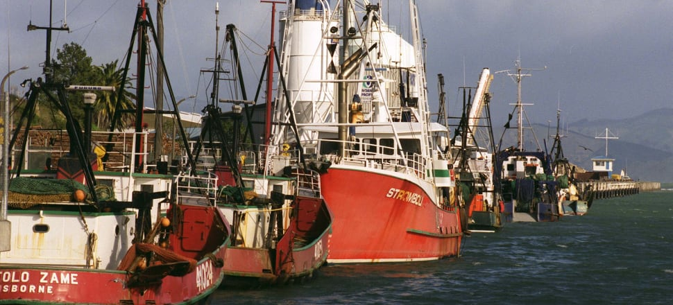 In fisheries, bottom-up approaches like New Zealand's Quota Management System have proved rather successful – but  previous decades of top-down regulatory approaches to ecosystem protection have failed. Photo: Getty images