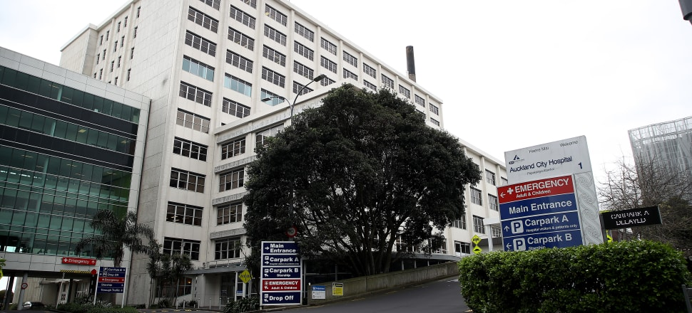 Auckland City Hospital in Grafton. Photo: Getty Images