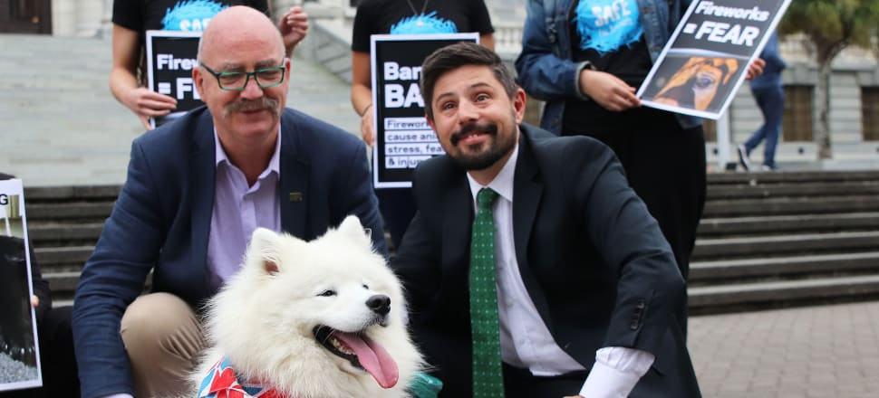 Green MP Gareth Hughes accepts an 18,000 strong petition from animal activists to stop the private sale of fireworks. Photo: Lynn Grieveson