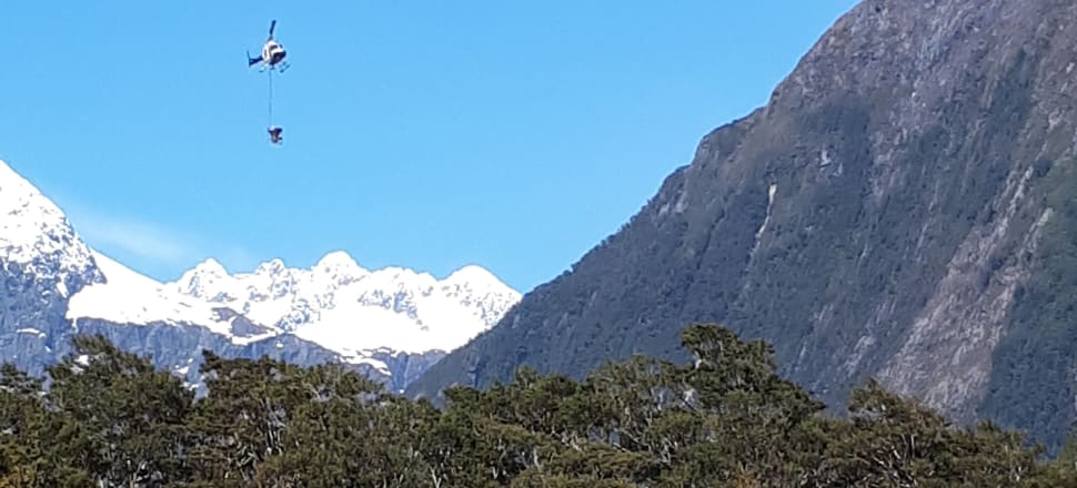 A 1080 operation in the Arthur-Cleddau area of Fiordland National Park earlier this month. Photo: DoC
