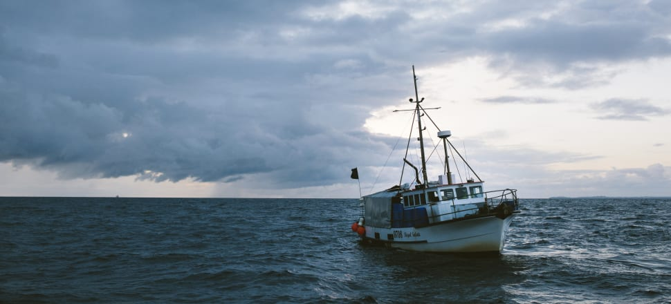 Sanctions on commercial fishing in Māui territory have been increasing since 2002. Photo: Supplied/Seafood NZ