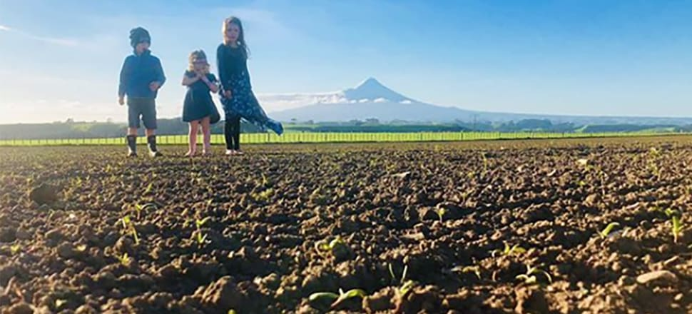 The future of farming: the Dunlop children watch the quinoa sprout on the family land at Hawera. Photo: Supplied