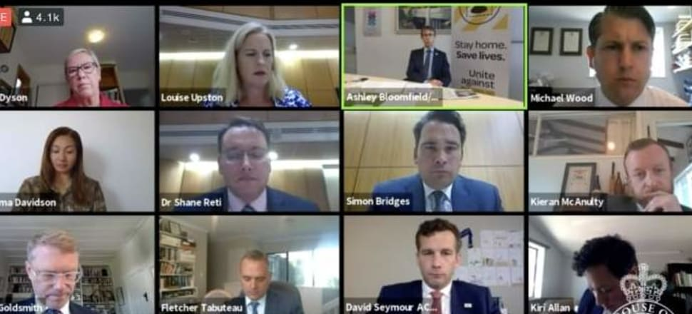 Parliament's epidemic response committee on Zoom last week. Screenshot: Parliament