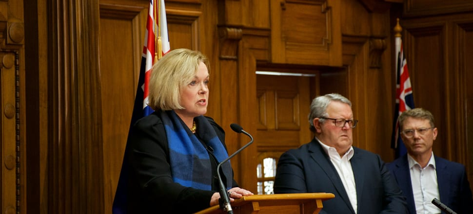 National Party leader Judith Collins calls on the Prime Minister to delay September's election. Photo: Marc Daalder