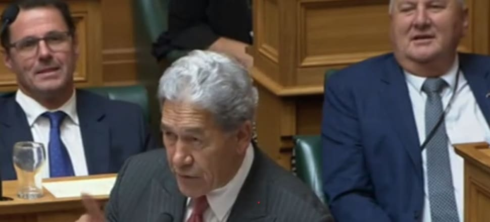 Winston Peters addressing National's backbench during the debate in Parliament. Photo: Screenshot, Parliament TV
