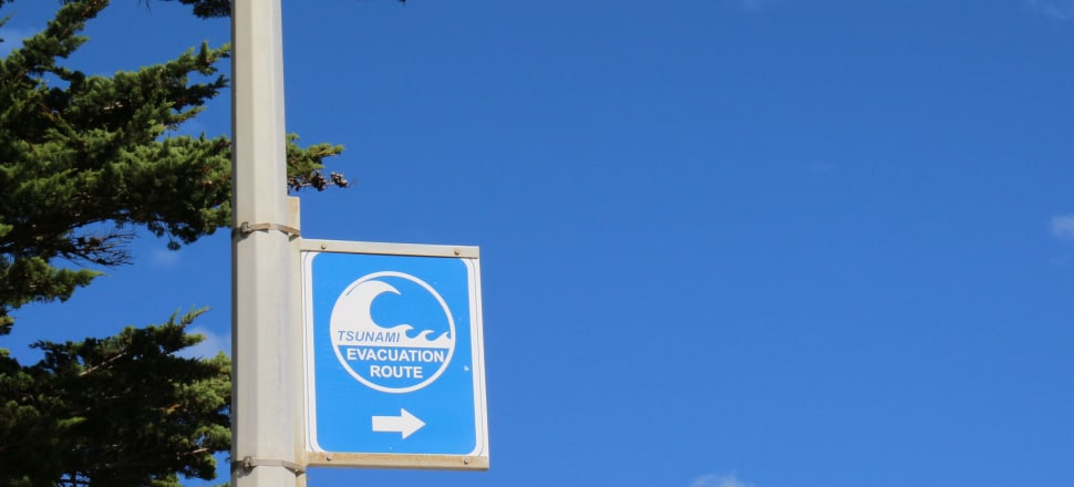 Tsunami evacuation route sign. Photo: Maddie Grieveson