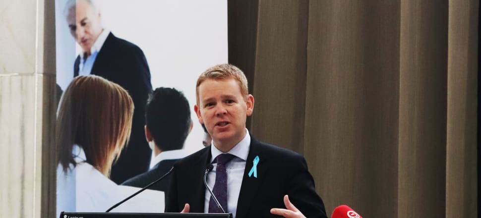 State Services Minister Chris Hipkins launched consultation on a new Act for the public service. Photo: Lynn Grieveson