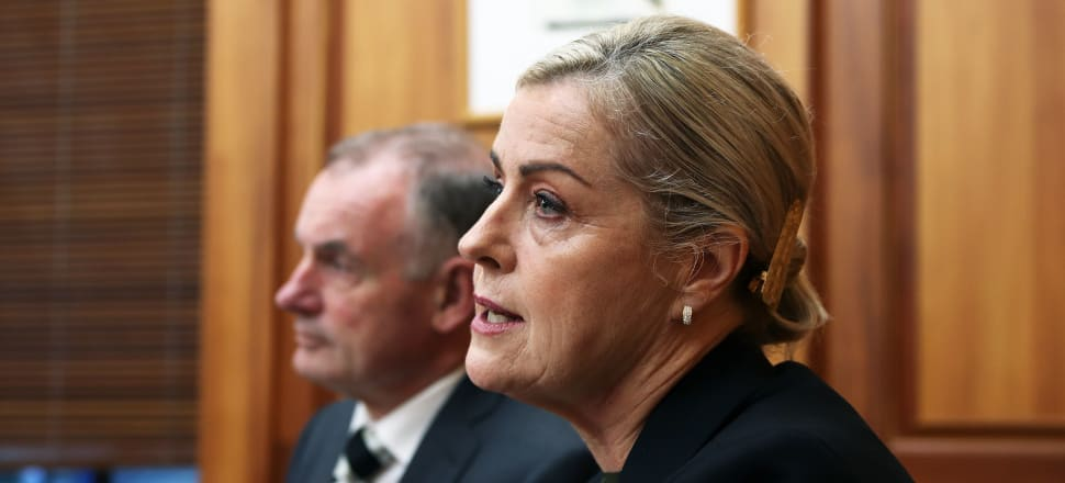 It's been a year since Debbie Francis released a damning report into bullying and harassment in Parliament. Photo: Lynn Grieveson.