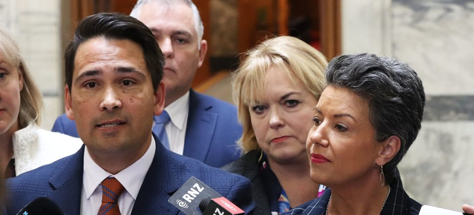 Voters like to think a party leader can, at the very least, control their own caucus. People will expect Collins (seen here behind Simon Bridges and Paul Bennett during the Jami-Lee Ross saga) to have fewer problems than her predecessors in that regard. Photo: Lynn Grieveson