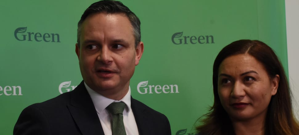 At the start of their virtual pre-election AGM, the Green Party has released a 'policy vision document' outlining a wide range of measures they would advocate for in Government. Photo: Marc Daalder