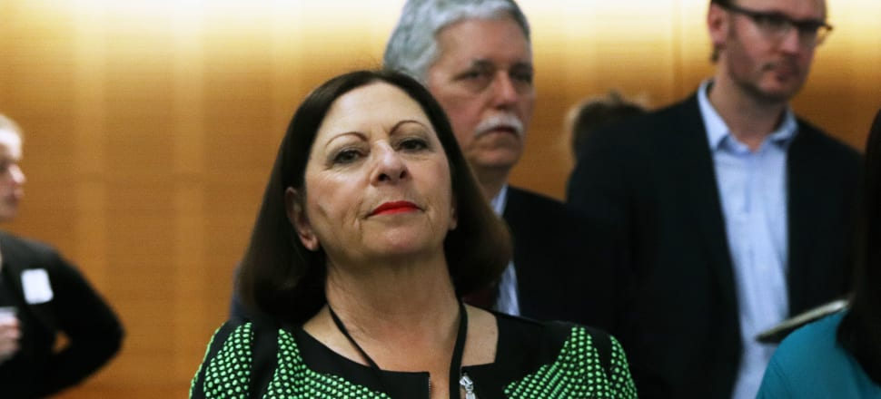 "Former National Party president Michelle Boag, who leaked private patient information to Hamish Walker, resigned from the Auckland Rescue Helicopter Trust over what she called ""a massive error of judgment on my part"". Photo: Lynn Grieveson."