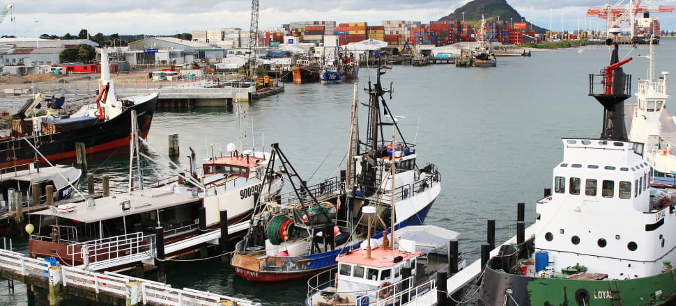 Both main political parties said they wanted them, but somehow the installation of cameras on fishing boats continues to get delayed. Photo: Lynn Grieveson