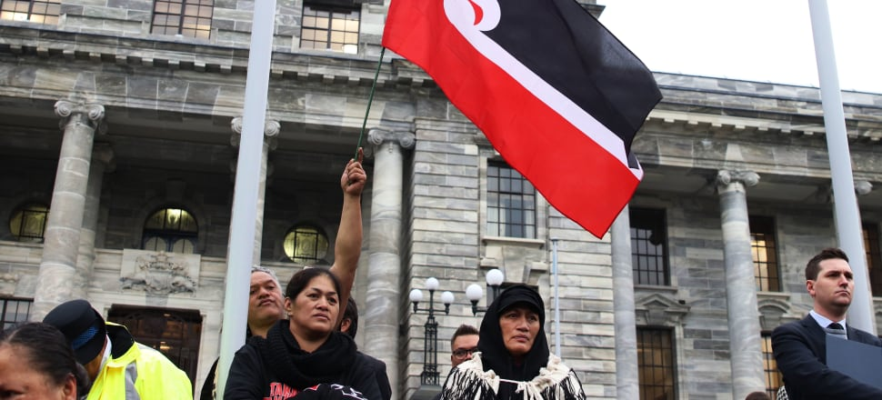 In a rare instance of public disagreement on a major review panel, the authors of the Health and Disability System Review could not come to a consensus on the powers of the proposed Māori Health Authority. Photo: Lynn Grieveson