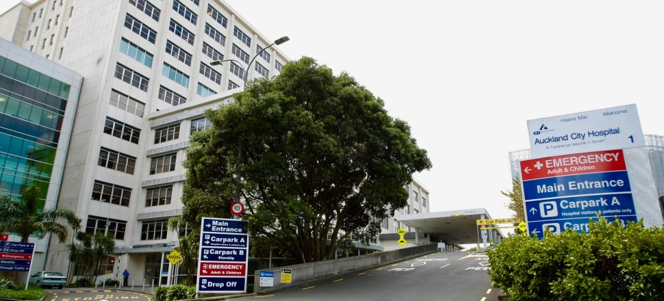 A patient with COVID-19 is in Auckland Hospital. Photo: John Sefton