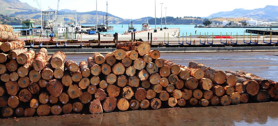 A wage subsidy package might have come too late for the logging industry. Photo: Lynn Grieveson