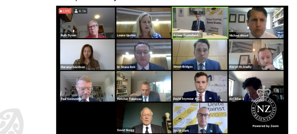 Parliament's epidemic response committee met via Zoom on Tuesday morning. Screenshot: Parliament.