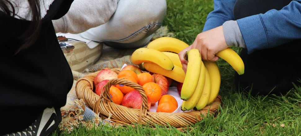 The Budget includes funding for a scheme to buy fruit, vegetables, eggs and other fresh produce that is at risk of going to waste (due to Covid-19's disruption of supply chains) and distributed it to those in need and through the Fruit in Schools programme. Photo: Lynn Grieveson
