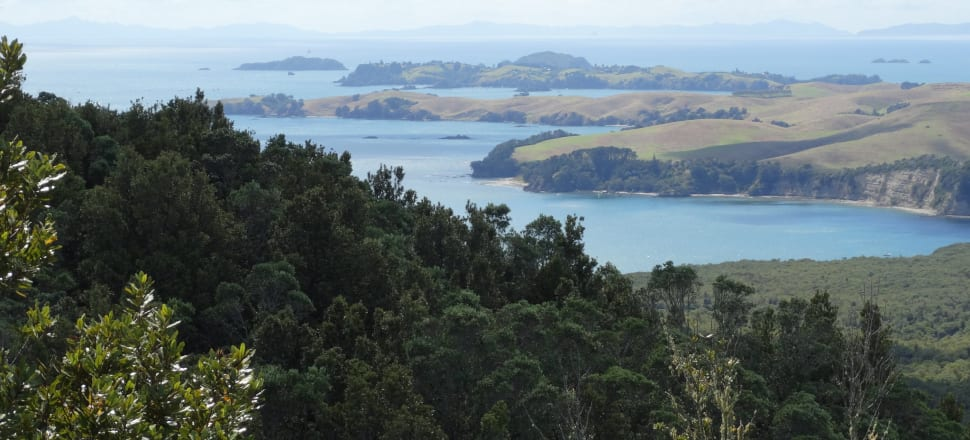 Only a tiny proportion of Auckland's Hauraki Gulf is protected, and its state of health is dire. Photo: Alexia Russell