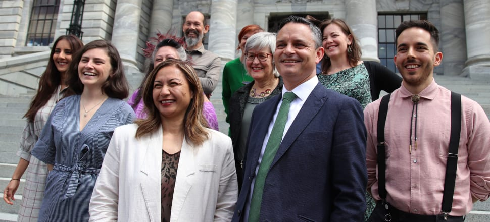 The Green Party has made it back to Parliament but how many ministers might it have? Photo: Lynn Grieveson