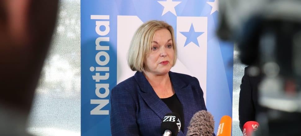 National Party leader Judith Collins says the infrastructure bank will better scrutinise infrastructure spending. Photo: Lynn Grieveson